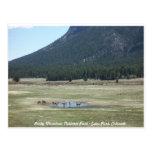 Parque Nacional de las Montañas Rocosas en el parq Tarjeta Postal
