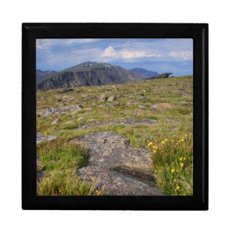 Parque Nacional de las Montañas Rocosas Joyero Cuadrado Grande