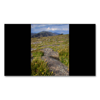 Parque Nacional de las Montañas Rocosas Tarjetas De Visita Magnéticas (paquete De 25)