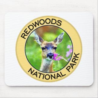 Parque nacional de las secoyas tapetes de raton