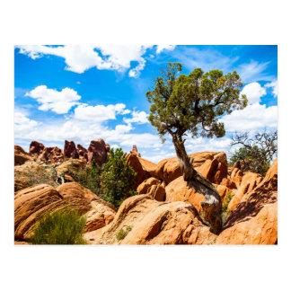 Parque nacional de los arcos - formaciones postal