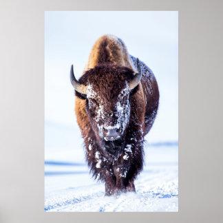 Parque nacional de los E.E.U.U., Wyoming, Póster