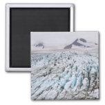 Parque nacional de los fiordos de Kenai Imán Cuadrado