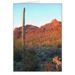 Parque nacional de Saguaro Felicitaciones