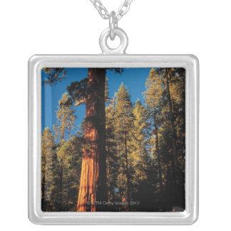 Parque nacional de secoya, California 2 Colgante Personalizado