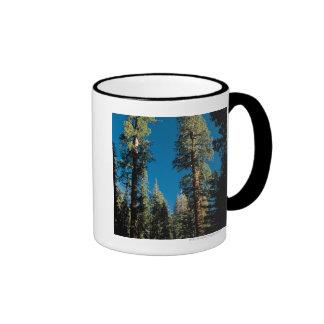 Parque nacional de secoya, California Taza De Dos Colores