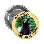 Parque nacional de secoya pin