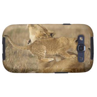 Parque nacional de Serengeti, Tanzania Galaxy S3 Cobertura