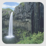 Parque nacional de Skaftafell, cascada de Colcomanias Cuadradas Personalizadas