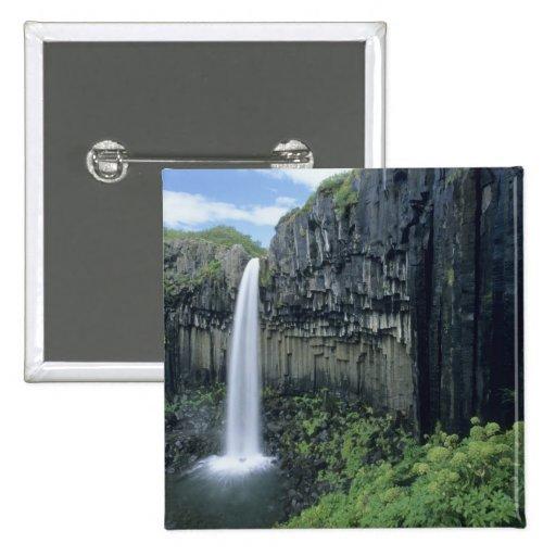 Parque nacional de Skaftafell, cascada de Svartifo Pins