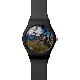 Parque nacional de Torres del Paine, árboles Reloj De Mano