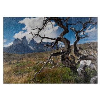 Parque nacional de Torres del Paine, árboles Tablas Para Cortar