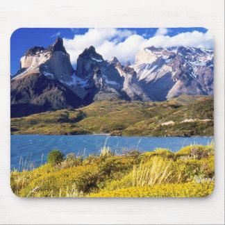 Parque nacional de Torres del Paine, Chile Mousepads