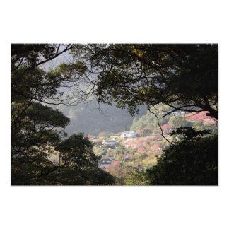 Parque nacional de Yangmingshan, el condado de Tai Cojinete