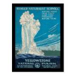 Parque nacional de Yellowstone del servicio del gu Tarjetas Postales