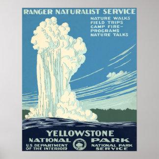 Parque nacional de Yellowstone Impresiones