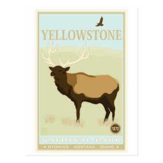 Parque nacional de Yellowstone Tarjetas Postales