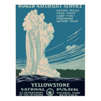 Parque nacional de Yellowstone Tarjeta Postal