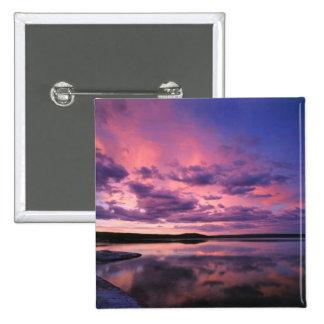 Parque nacional de Yellowstone, Wyoming. LOS E.E.U Pin
