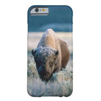 Parque nacional de Yellowstone, Wyoming, los Funda Barely There iPhone 6