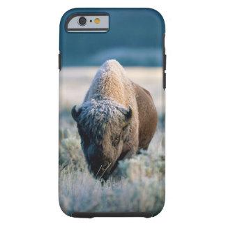 Parque nacional de Yellowstone, Wyoming, los Funda Resistente iPhone 6