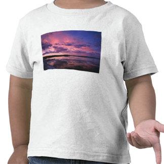 Parque nacional de Yellowstone, Wyoming. LOS Camiseta