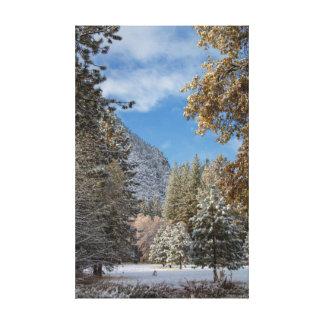 Parque nacional de Yosemite después de una nevada Lona Envuelta Para Galerías