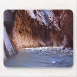 Parque nacional de Zion de los estrechos Alfombrillas De Raton