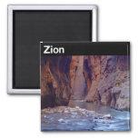 Parque nacional de Zion Imán Para Frigorifico