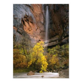Parque nacional de Zion, Utah. LOS E.E.U.U. Efímer Impresión Fotográfica