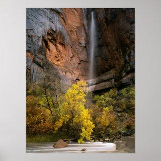 Parque nacional de Zion, Utah. LOS E.E.U.U. Efímer Póster