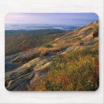 Parque nacional del Acadia de la montaña de Cadill Tapetes De Ratón