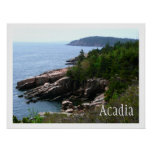 Parque nacional del Acadia Poster