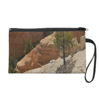 Parque nacional del barranco de Bryce Utah 2
