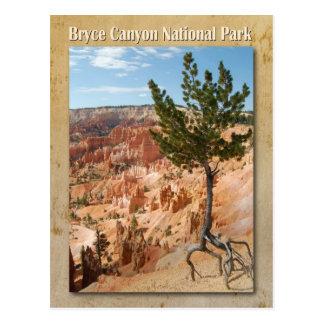 Parque nacional del barranco de Bryce, Utah Tarjetas Postales