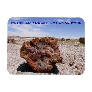 Parque nacional del bosque aterrorizado rectangle magnet
