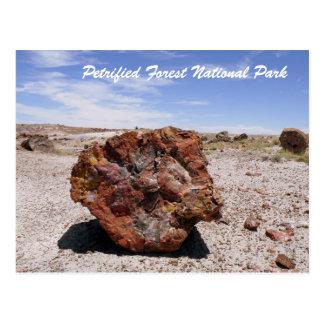 Parque nacional del bosque aterrorizado tarjeta postal