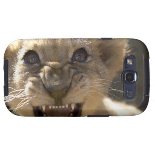 Parque nacional del elefante de Addo, Eastern Cape Funda Para Samsung Galaxy S3