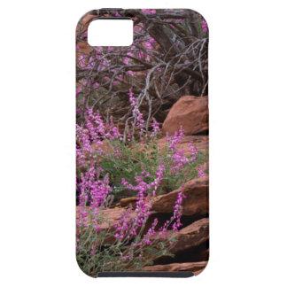 Parque nacional del filón del capitolio, Utah, los iPhone 5 Cobertura