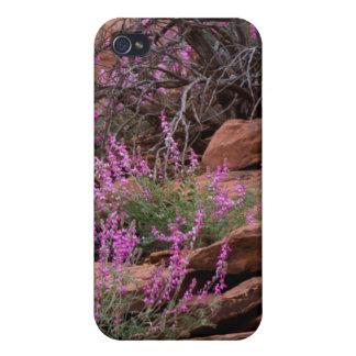 Parque nacional del filón del capitolio, Utah, los iPhone 4 Fundas