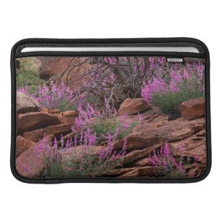 Parque nacional del filón del capitolio, Utah, los Funda MacBook