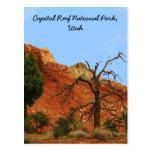 Parque nacional del filón del capitolio, Utah Tarjetas Postales