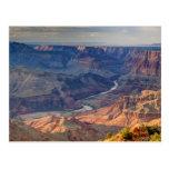 Parque nacional del Gran Cañón, Ariz Tarjetas Postales