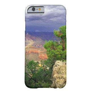 Parque nacional del Gran Cañón, Arizona, unido 3 Funda Para iPhone 6 Barely There