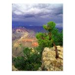 Parque nacional del Gran Cañón, Arizona, unido 3 Postal