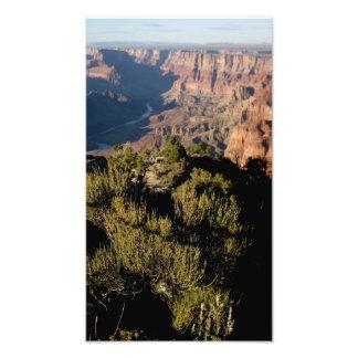 Parque nacional del Gran Cañón de Arizona (43) .JP Arte Con Fotos