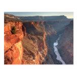 Parque nacional del Gran Cañón, los E.E.U.U. Tarjetas Postales