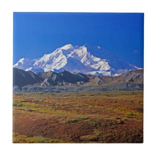 Parque nacional del monte McKinley Denali, Alaska Azulejo Cuadrado Pequeño