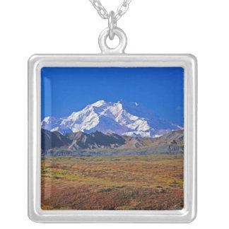 Parque nacional del monte McKinley Denali, Alaska Colgante Cuadrado