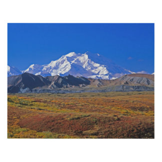 Parque nacional del monte McKinley Denali, Alaska Cuadro
